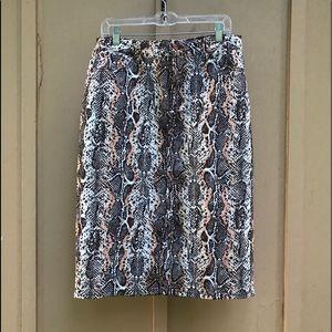 Eva Mendes Snake Skin Print Skirt